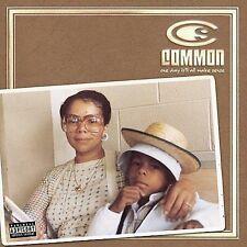One Day It'll All Make Sense by Common
