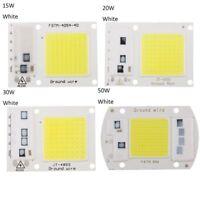 220V Floodlight 20/30/50W Cool / Chaude Blanc COB Chip Smart IC LED Driver Lampe