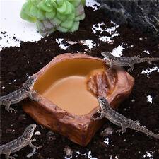 Food Water Round Bowl Feeder Terrarium Decoration Pet Reptile Tortoise Snake