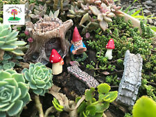 Miniature gnome garden starter set fairies gnomes decor terrariums pots planters
