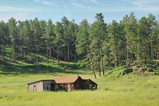 Old Homestead in Black Hills, Photo Art Wall Decor, Family Room, Den, Kitchen