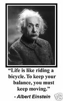 "Albert Einstein "" life is like..."" Quote 11 x 17 Poster Photo #hd1"