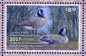 CANADA 2017 DUCK STAMP MINT IN FOLDER AS ISSUED CANADA GOOSE by Angela Lorrenzen
