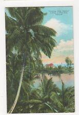 Jamaica, A Peep at Blue Hole, Portland Postcard, B243