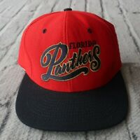 Vintage New 90s Florida Panthers Snapback Hat Cap by American Needle