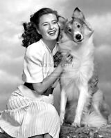 """ACTRESS BARBARA STANWYCK AND """"LASSIE"""" IN 1944 - 8X10 PUBLICITY PHOTO (ZZ-673)"""