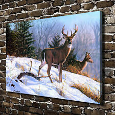 "16""x24""Snowfield Deer HD Canvas prints Painting Home Room Decor Picture Wall art"