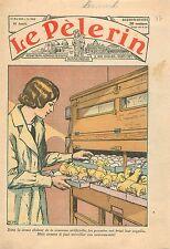 Ferme Laboratoire Couveuse Artificielle Poussin Incubator Artificial Chick 1936