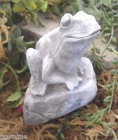 Latex frog mold on rock plaster mould  concrete mold