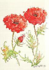 (15631) Postcard - Flowers - Papara Orientale