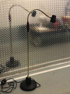 Serious Readers Floor / Standard Halogen Lamp- COLLECTION ONLY