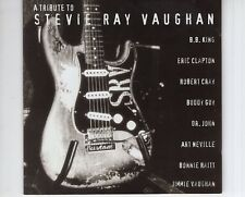 CD  A TRIBUTE TO STEVIE RAY VAUGHAN	various art. 	EX (B3462)