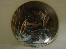 Knowles Michael Budden Aloft Second In Free As The Wind Series Collector Plate