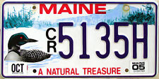 Maine LOON License Plate - DUCK MALLARD BIRD