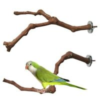 Bird Standing Stick Wild Grape Wood Pole Parakeet Perches Bite Claw Grinding Toy