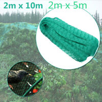 2X5M 2X10M Garden Netting Anti Bird Net Protection Veg Crops Plant Fruit  ! !