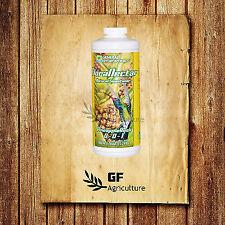 General Hydroponics FloraNectar Pineapple Rush 1 Quart 32oz - gh sweetener