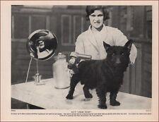DOG GROOMER, DRYING DOG, VINTAGE PRINT, AUTHENTIC 1935