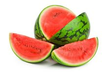 Giant Watermelon 15-Finest Seeds / Very Delicious And Juicy / UK Seller