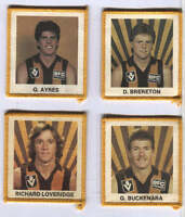AFL HAWTHORN  FOOTBALL CLUB    DUFFLE COAT NAME TAGS   PHOTO PATCHES