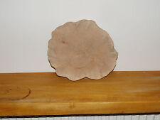 3 Baumscheiben, Holzscheibe, 25 x 3 cm, Wildbirne, geschliffen