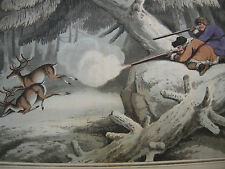 Siberia esuli Caccia Cervi ORIG farblithographie Dubourg 1813 CACCIA