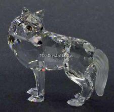 SWAROVSKI Crystal WOLF 207549/7550 000 002 Nuovo di zecca Boxed RITIRATO RARO