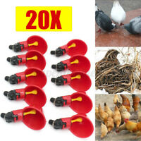20PCS Poultry Water Drinking Cups Automatic Feeder Drinker Chicken Hen Feeding