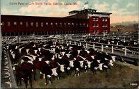 East St Louis Missouri~Live Stock Yards~Cattle Pens~Stock Pavilion~1910 Postcard