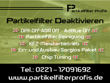 DPF OFF AGR OFF Partikelfilter Deaktivieren Audi Q7 3.0 TDI 4.2 TDI