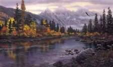 "Darrell Bush "" Mountain Hideaway "" AP  Only 60 Edition"