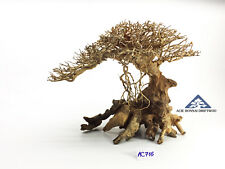 Bonsai Driftwood Avatar Movie Mother Tree International Shipping -Size L- AC716