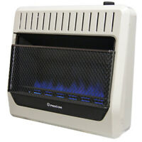 ProCom MG30TBF Ventless Dual Fuel Blue Flame Wall Heater, Vent Free - 30,000 BTU