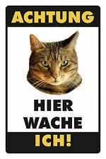 Atención gato motivo 1 chapa escudo Escudo de chapa de metal metal Tin sign 20 x 30 cm