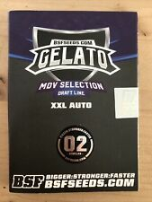Gelato XXL Auto, BSF Seeds,2 Semi Autofiorenti  Da Collezione