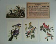 "4 John James Audubon Litho Repros 5""x7"" Birds & Duck Prints"