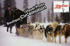 12 Photos Cinéma 20x30cm (1990) JESUIT JOE Peter Tarter, Laurence Treil NEUVE