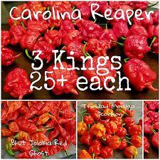 (75+) Carolina Reaper Scorpion Ghost Pepper Seeds 25 each