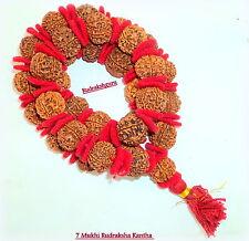 7 Mukhi Rudraksh Kantha / Laxmi Siddha Mala / Lakshmi Siddh Mala - 33 pc - Nepal