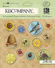 Tim Coffey Foliage Scrapbooking Brads K&COMPANY 15 pieces NEW Flowers Beetle Jay