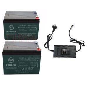 2 Pack 6-DZM-12 12V 12AH Battery + 24V Charger Electric Go Cart ATV Buggy Quad