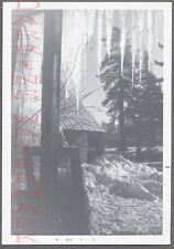 Unusual Vintage Photo Window View of Frozen Icicles & Winter Snow 714686
