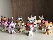 15Lot Littlest Pet Shop Collie Great Dane Dog Short Hair Cat LPS Toy Rare Gift
