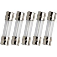 10x Schurter 1.6A 250V Time Lag Slow Blow Glass Fuse Feinsicherung Träge Ø5x20