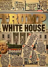 PETERS 1927-2019 NEW YORK CITY TRUMP WHITE HOUSE POST 2015 POLITICAL COLLAGE