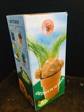 Free Postage Mrs Green Magic Pot Head Plant Kids Garden Toy Project Hair Grass