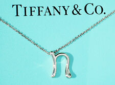 Tiffany & Co Elsa Peretti Sterling Silver Alphabet Letter Initial N Necklace