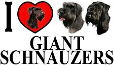 I LOVE GIANT SCHNAUZERS Car Sticker By Starprint - Featuring the Giant Schnauzer