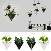 Acrylic Geometric Plant Flower Pot Hanging Succulent Vase with Holder Novelty