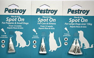 Pestroy Flea & Tick Treatment Spot On For Cats & Kittens, Large And Small Dogs